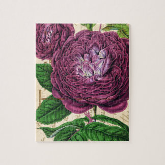 Scarlet Beauty Rose Puzzles