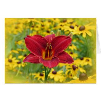 Scarlet Gold - Daylily Card