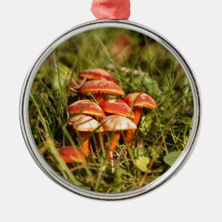 Scarlet hood fungi, Hygrocybe coccinea Metal Ornament