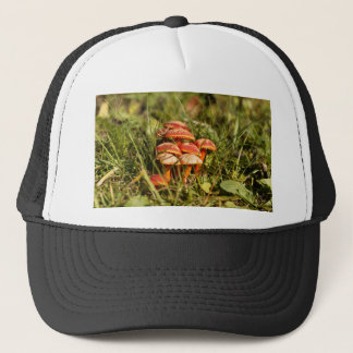 Scarlet hood fungi, Hygrocybe coccinea Trucker Hat