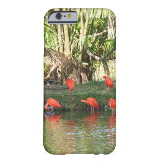 Scarlet ibis barely there iPhone 6 case