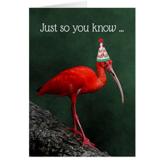 Scarlet Ibis Festive Hat Birthday Card