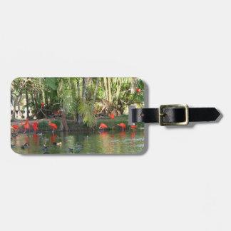 Scarlet ibis luggage tag
