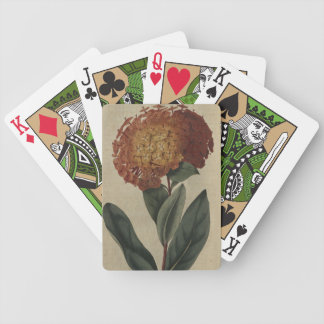 Scarlet Ixora Bicycle Playing Cards