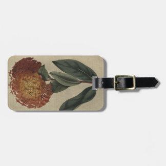 Scarlet Ixora Luggage Tag