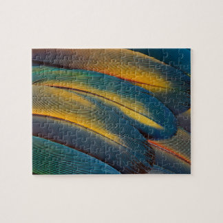 Scarlet Macaw feather close up Jigsaw Puzzle