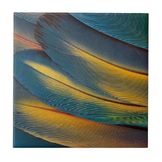 Scarlet Macaw feather close up Tile