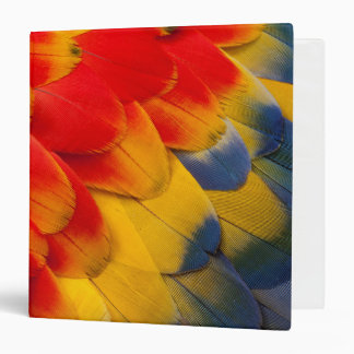 Scarlet Macaw feathers close-up Binders