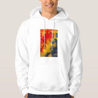 Scarlet Macaw feathers close-up Hoodie