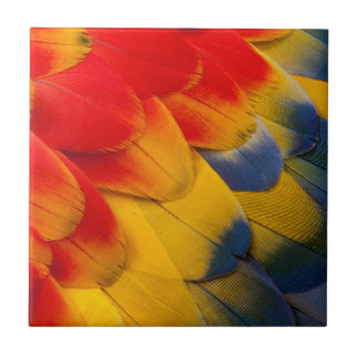 Scarlet Macaw feathers close-up Tile