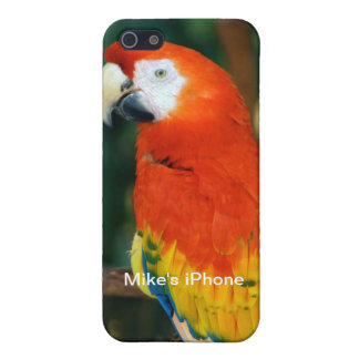Scarlet Macaw iPhone 5 Cases