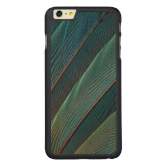Scarlet macaw parrot feather carved® maple iPhone 6 plus case