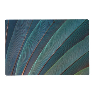 Scarlet macaw parrot feather laminated placemat