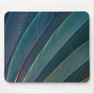 Scarlet macaw parrot feather mouse pad