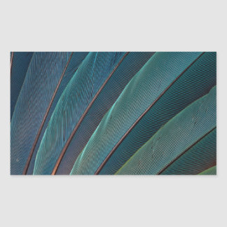 Scarlet macaw parrot feather sticker