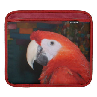 Scarlet Macaw Profile View iPad Sleeve