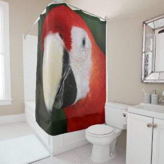 Scarlet Macaw Red Head Parrot
