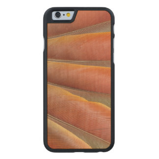 Scarlet Macaw Red-Orange Feathers Carved Maple iPhone 6 Case