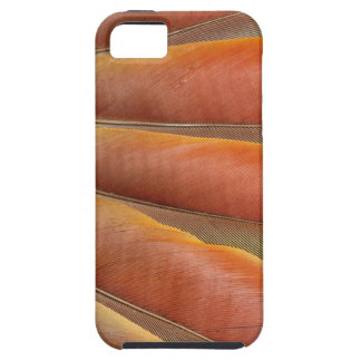 Scarlet Macaw Red-Orange Feathers Case For The iPhone 5
