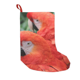 Scarlet Macaw Small Christmas Stocking