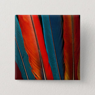 Scarlet Macaw Tail Feathers 2 Inch Square Button