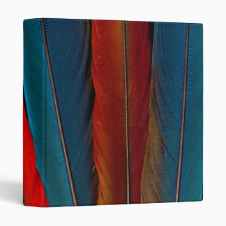 Scarlet Macaw Tail Feathers 3 Ring Binders
