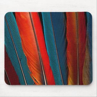 Scarlet Macaw Tail Feathers Mouse Pad