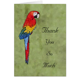 Scarlet Macaw Thank You Notecard