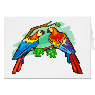 Scarlet Macaws Card