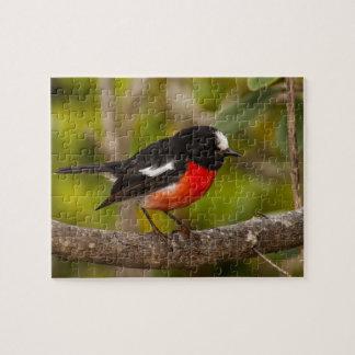Scarlet Robin Puzzle
