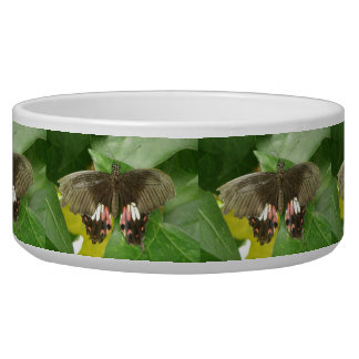 Scarlet Swallowtail Butterfly Dog Bowl