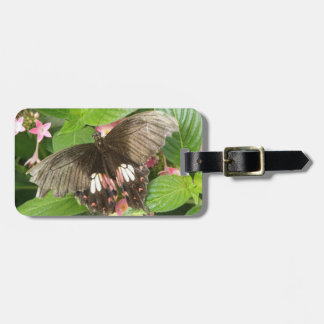 Scarlet Swallowtail Butterfly Macro Custom Luggage Tag