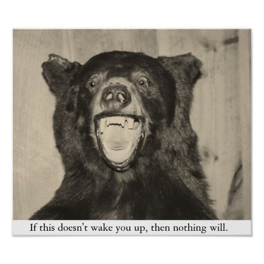 Scary Bear Poster