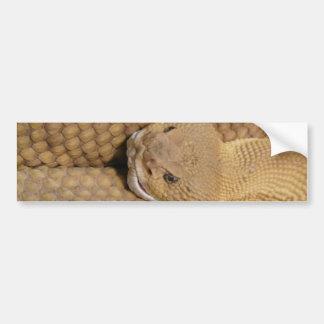 Scary Rattlesnake Photo Bumper Sticker