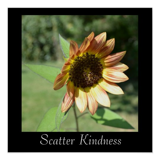 Scatter Kindness Sunflower Poster