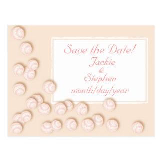 Scattered Seashells Postcard