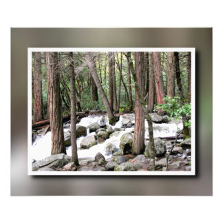 Scene from Yosemite Photo Print