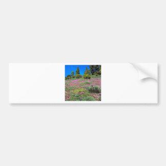Scene Springtime Sierra Foothills California Bumper Sticker