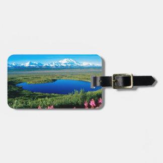 Scene Tundra Mount Mckinley Denali Alaska Bag Tag