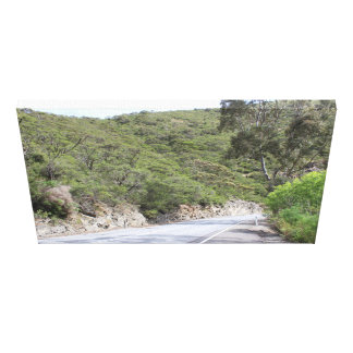 Scenery canvas from the Adelaide Hills