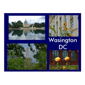 Scenes from Washington DC Postcard