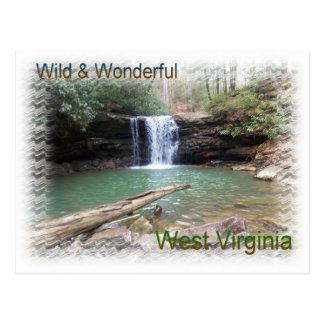 Scenic Appalachian Waterfall Postcard