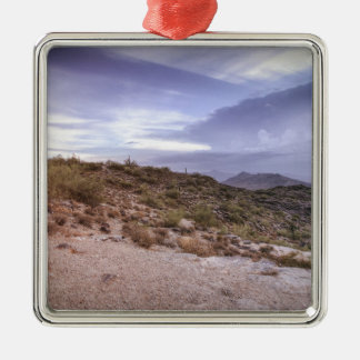 Scenic Arizona Silver-Colored Square Ornament
