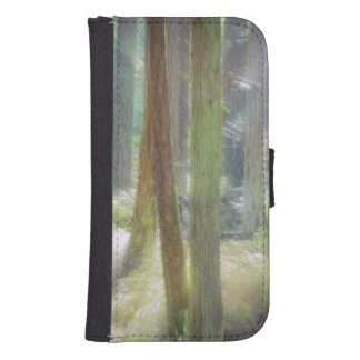 Scenic Beach State Park Phone Wallet Case