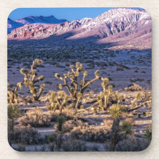 Scenic Canyon Twilight Coasters
