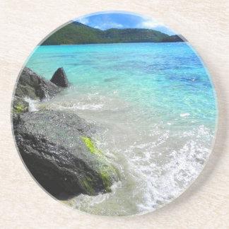 Scenic Coaster