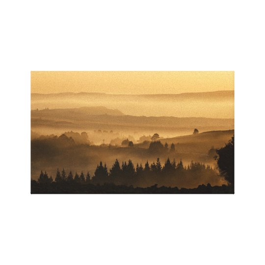 Scenic Forest Stretched Canvas