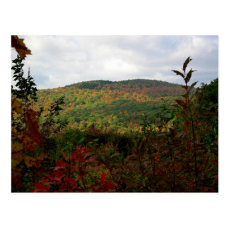 Scenic Hilltop New England Foliage Postcard