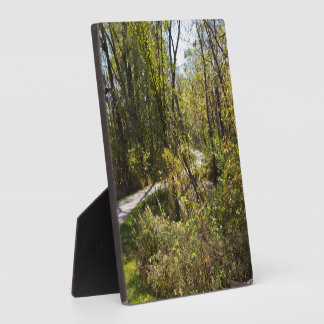 Scenic Nature Trail with Pathway Plaque