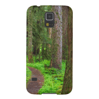 Scenic of old growth forest galaxy s5 case